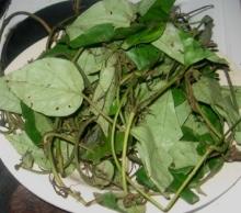 Picture of Dried Oha Leaf 20g (Pterocarpus Mildraedii)