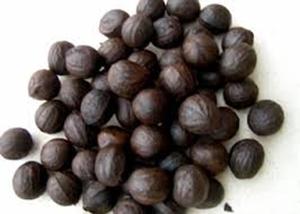 Picture of Walnut (Tetracarpidium Conophorum) - 5 Walnuts