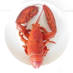 Picture of Fresh UK Lobster (Cooked, Whole, Frozen)