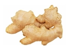 Picture of Fresh Ginger