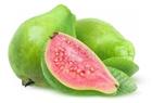Picture of Guava (3 Guavas) - (Psidium Guajava)