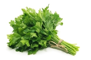 Picture of Fresh Parsley Leaf