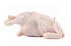 Picture of Boiler (Hard) Chicken (1 Whole)