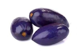 Picture of Ube FROZEN (African Pear, Safou, Atanga) - Dacryodes edulis